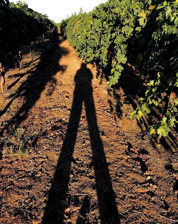 Self-portrait in Acquiesce Vineyards
